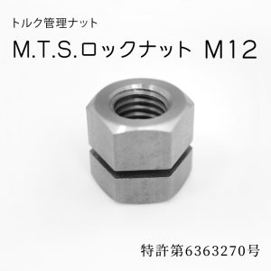 mtsm12